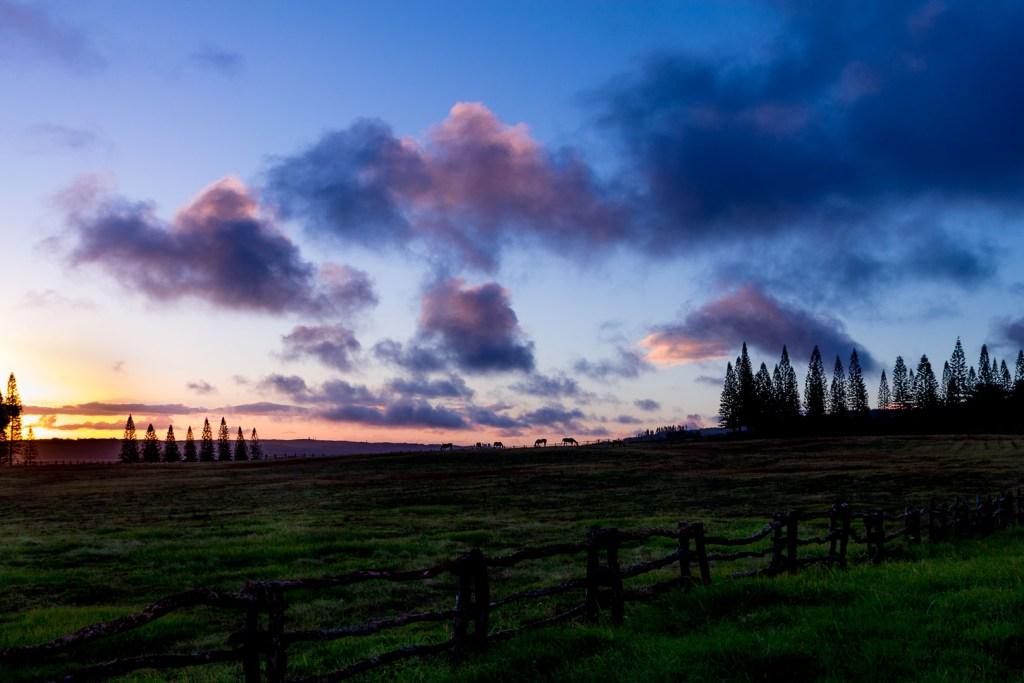 Koele Sunset LOL