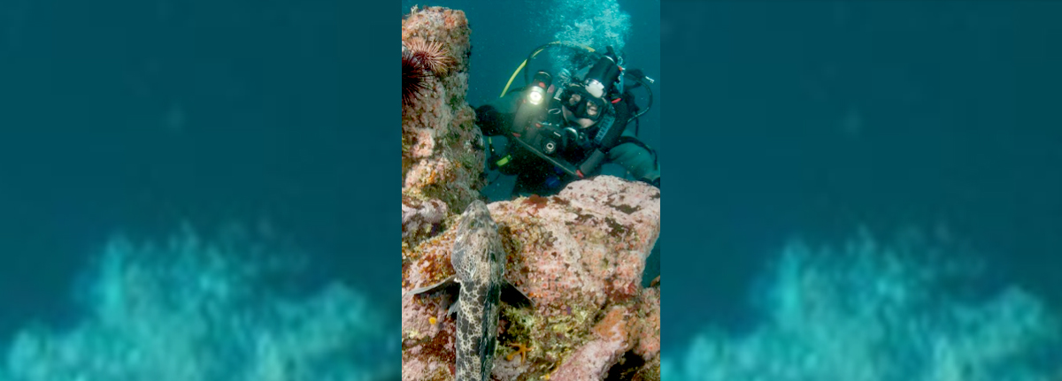 scuba-diver-underwater-and-fish