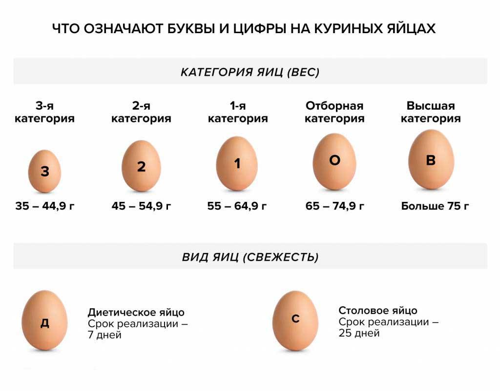 Виды куриных яиц
