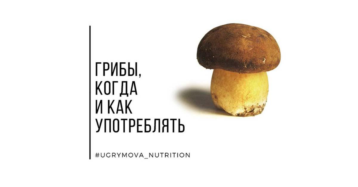 Грибы: применение грибов, как готовить и употреблять