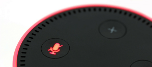Speak now and it shall appear: Voice ordering – the new reality of retail
