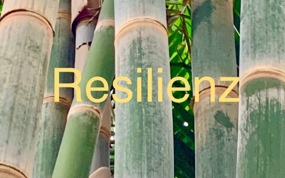 Resilienz: In acht Schritten für mehr Flexibilität, Gesundheit und Glück