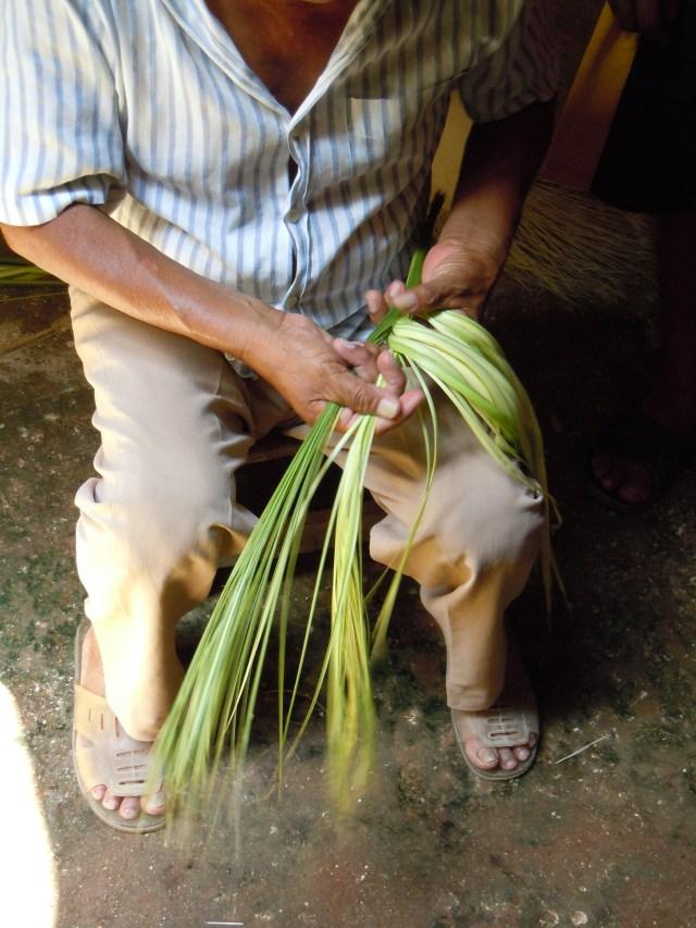 Turning Green Plant Fibers into Straw