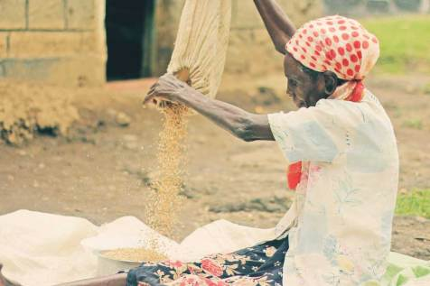 Paulina in Nairobi, Kenya, is hard at work processing grain. Program benefits helped her improve her roof with iron sheets, so now she's able to store her grains in her home after the harvest.