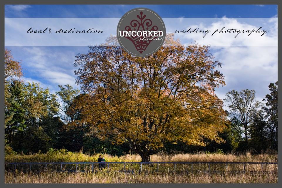 UncorkedStudios_LongwoodGardens_AutumnEngagement