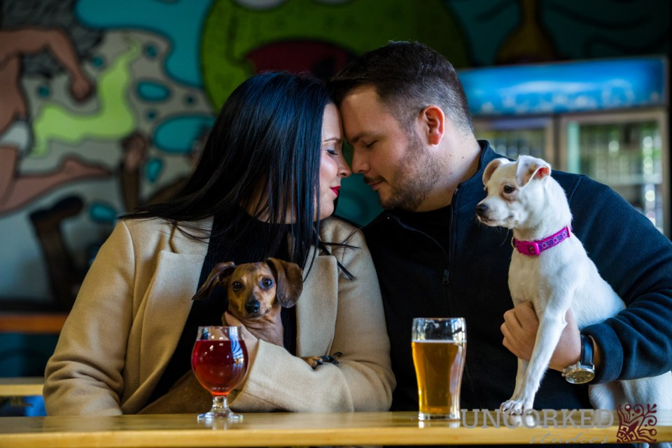 Neshaminy Creek Brewing Company Engagement Session in tasting room with dogs