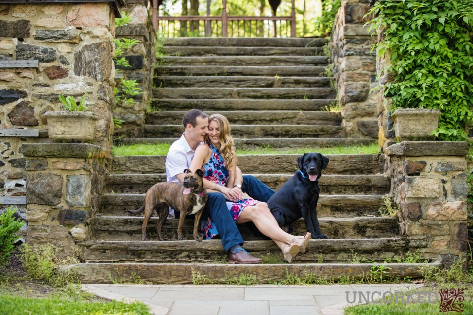 Engagement Session with Dogs on Steps