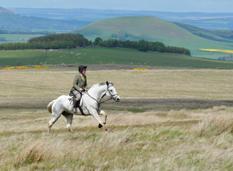 blog-common-ridings-rider-fields