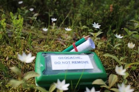 geocaching-blog-geocache