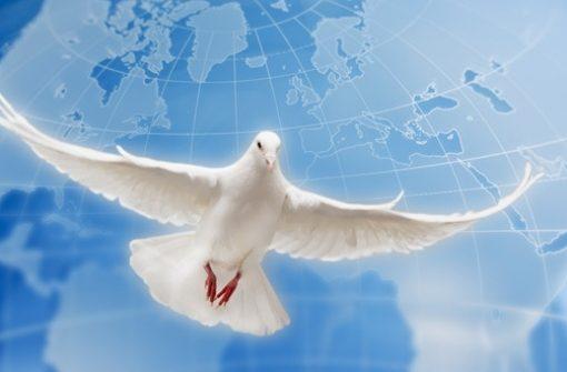 Resultado de imagem para Imagenes de la paz en portugues