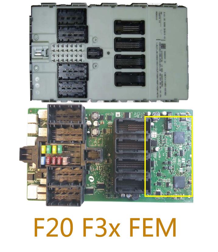 FEM-1