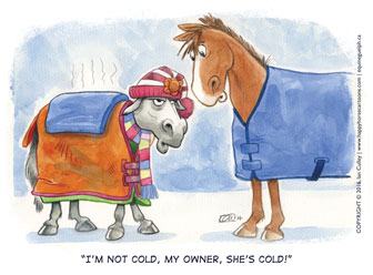 I'm-not-cold-blankets_Ian_Culley_2016(336x248px)