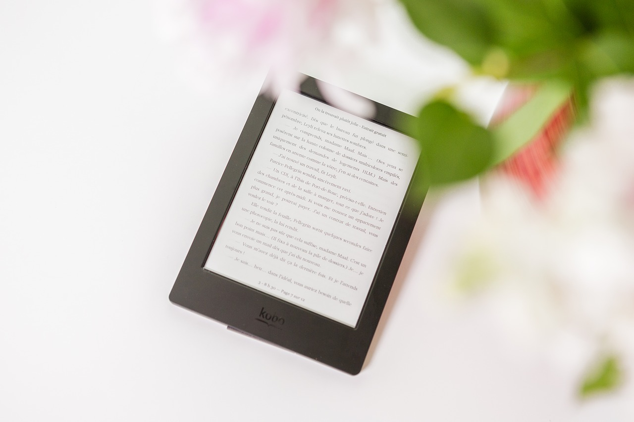 Writing Your Ebook with Ureed