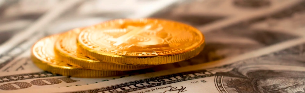 Coins and cash - startup aim. monetization model