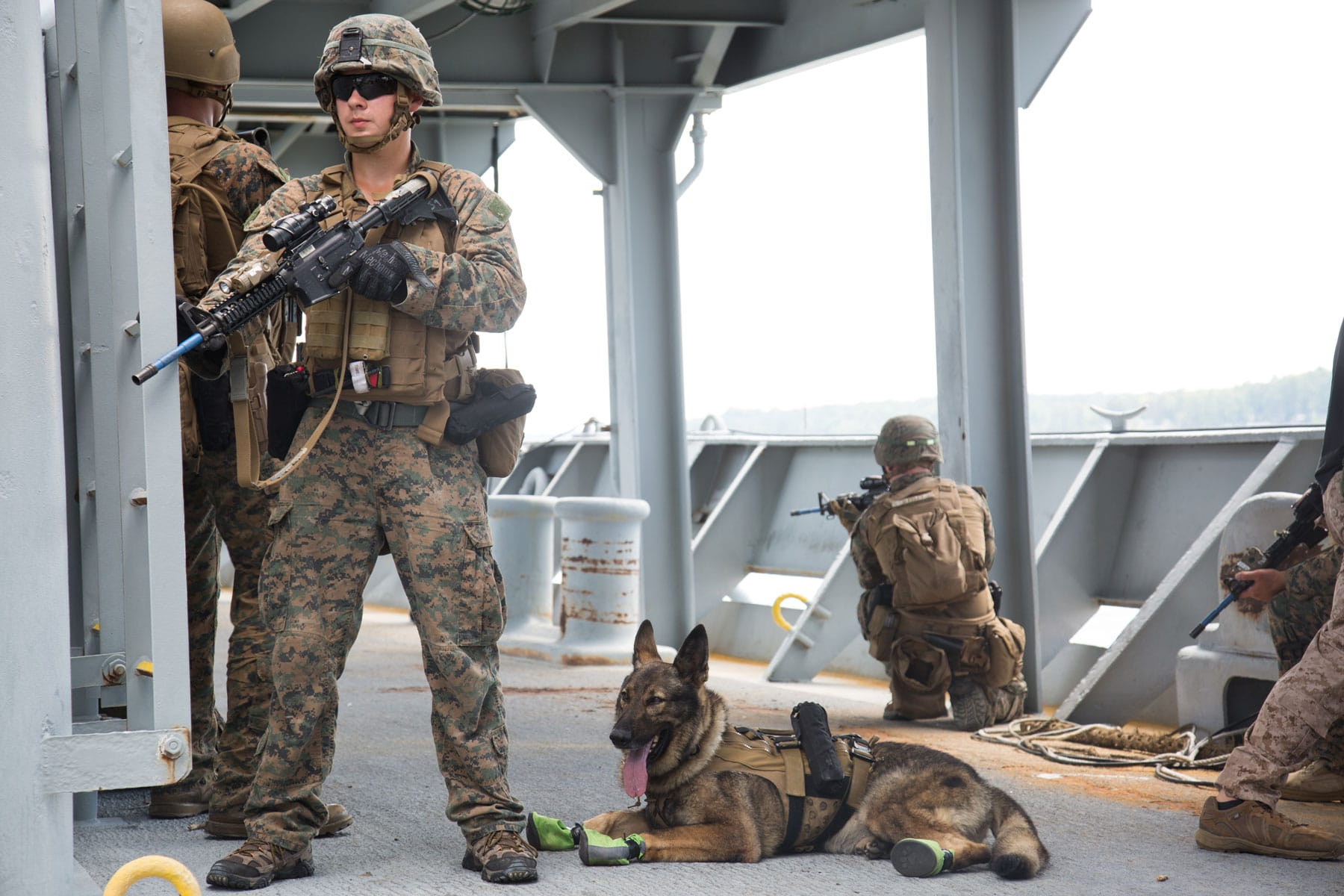 USMC Lance Cpl. Anthony Ingrao with the Maritime Raid Force posts security during visit, board, search and seizure training at Fort Eustis, VA.