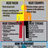 Heat Stress Injuries