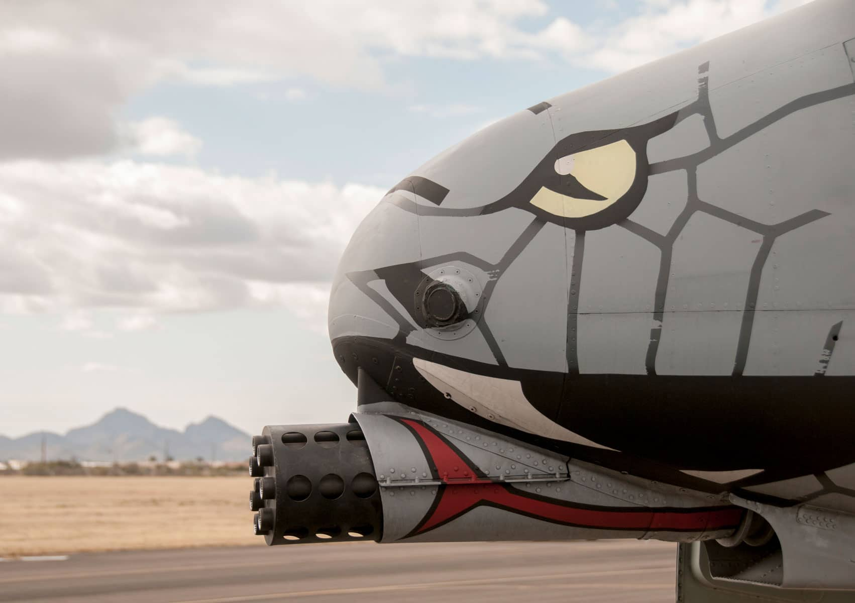 Blacksnakes Train to Strike: A10 aircraft, crew and support personnel from the 122nd Fighter Wing traveled to Davis-Monthan Air Force Base, Arizona, for Operation Snowbird, an exercise at the Total Force Training Center.