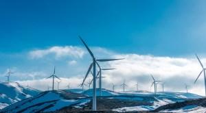 wind turbines in snow