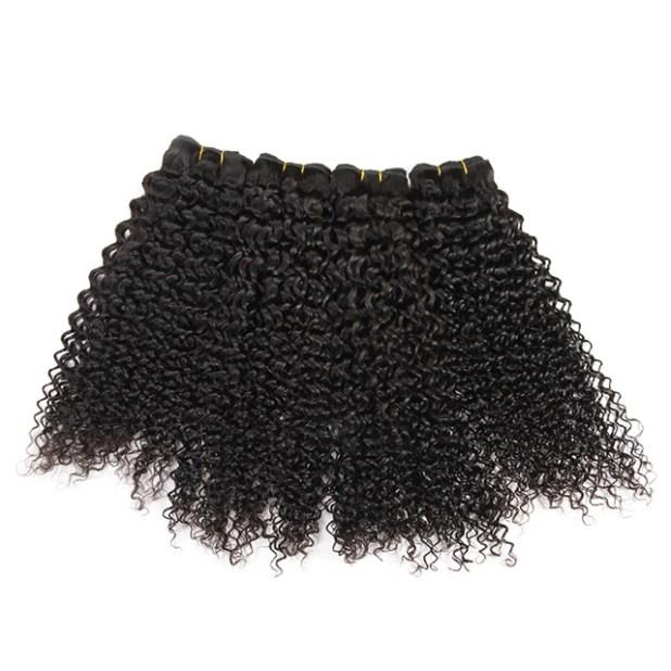 brazilian kinky curly hair extension
