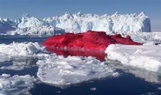 040325_hmed_iceberg_1130a.grid-6x2
