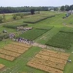 Registration Open for 10th Annual Crops and Soils Field Day, 7/27