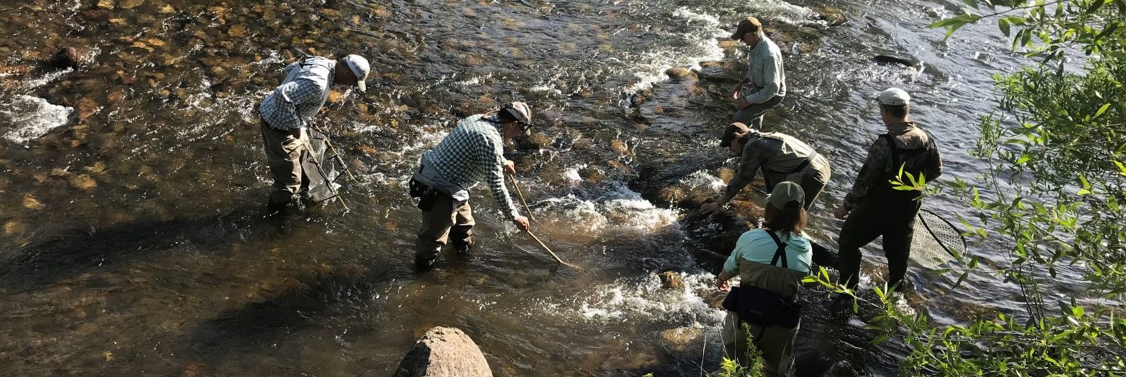 Intro to Fly Fishing | CMC Course – blog vailvalleyanglers com