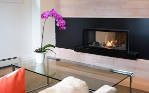 L1 2-Sided Series fireplace