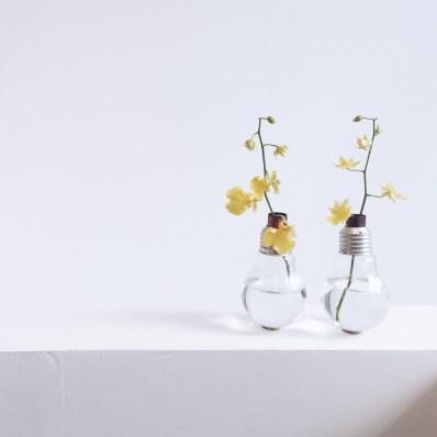 vases-ampoule