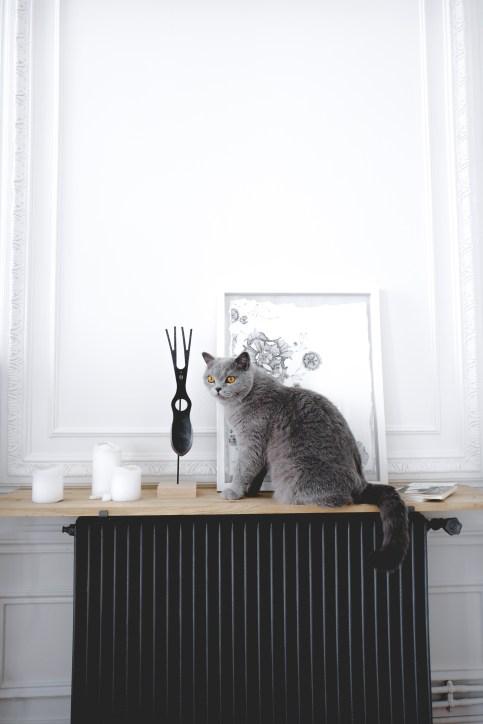 radiateur-fonte-bricolage