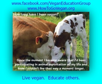 how-long-vegan-sfveg-poster