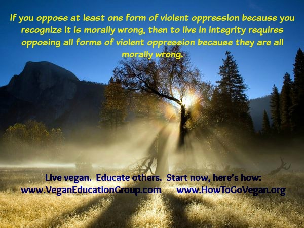 Violent oppression SFVEG poster 001