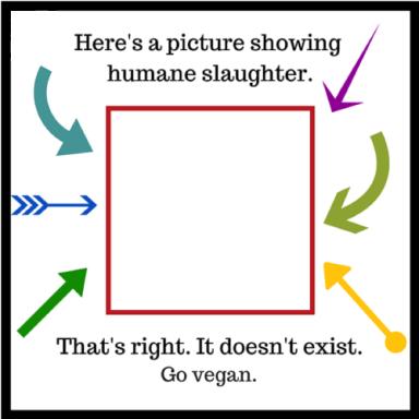humane 002