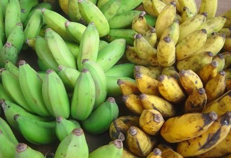 Green Yellow Bananas Dsc07775