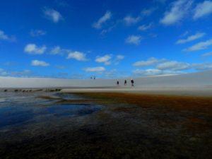 Lençóis Maranhenses: Lagoas cheias