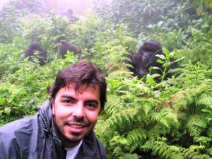 Gorilas em Ruanda proximidade Claudine Blanco 300x225 - 5 países africanos que você precisa conhecer