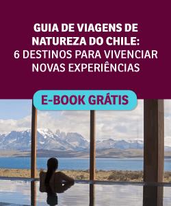 Guia de viagem do Chile: 6 destinos para vivenciar novas experiências