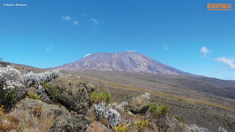 Kilimanjaro - Manoel Morgado