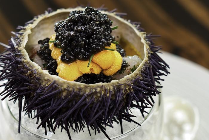 51st-national-day-venuerific-blog-epicurean-market-marina-bay-sands-sea-urchin
