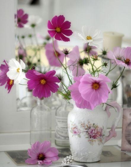 Perfect-wedding-flower-venuerific-blog-the-plain-jane-cosmos-light-purple-flowers