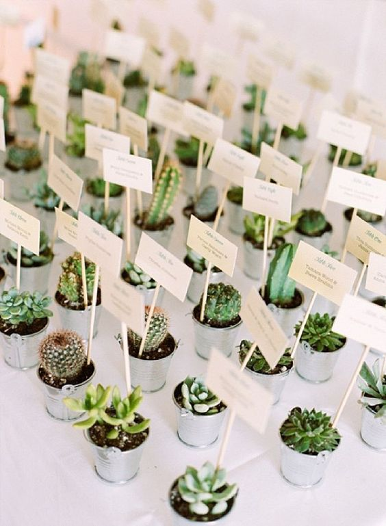 bohemian-wedding-venuerific-blog-wedding-doorgift-cactus
