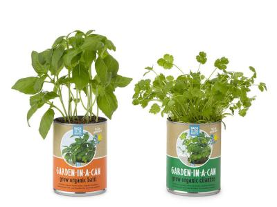 quirky gift for bridal shower, garden in a can