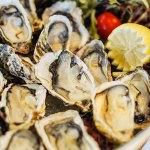 Oleron Fine de Claire oysters