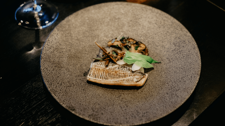 tasty japanese lunch course deals