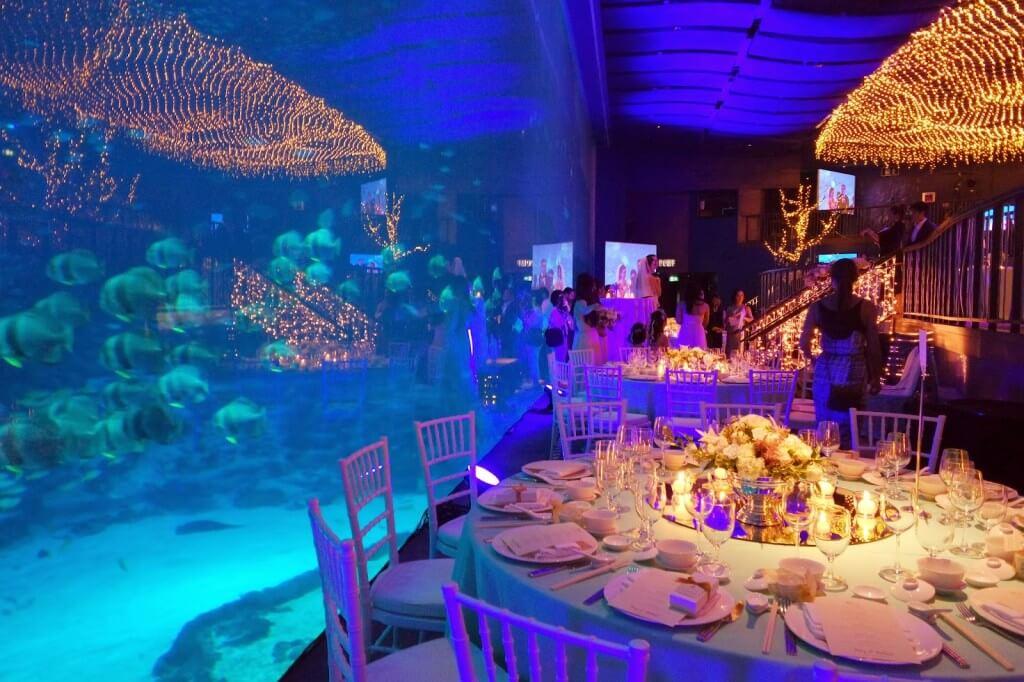 dining table set by the fish tank at sea aquarium