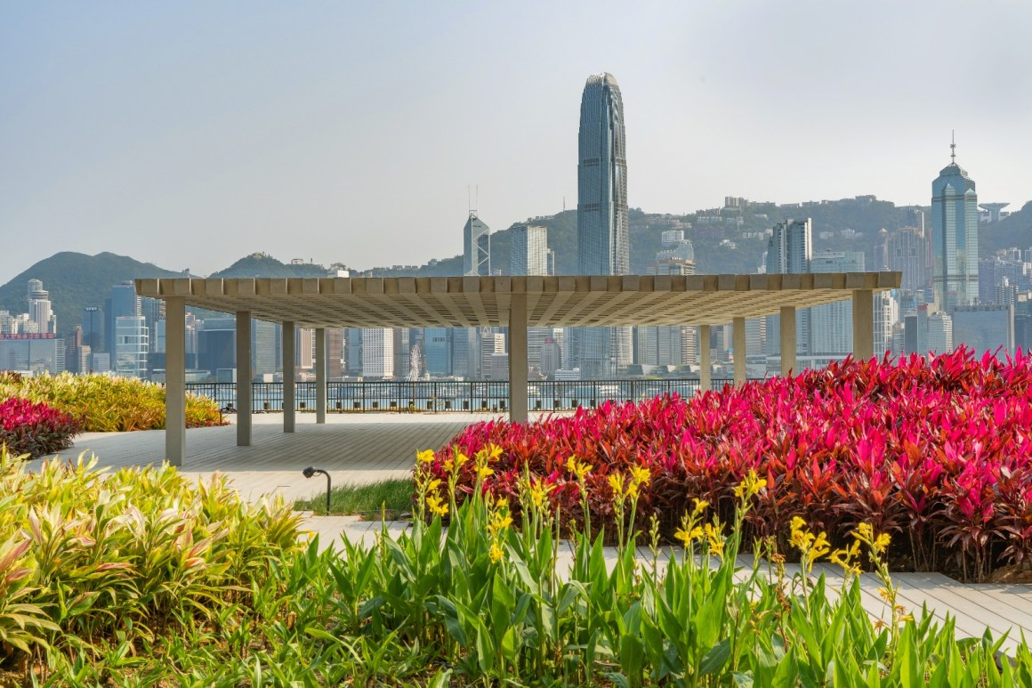 Hong Kong harbour in the background with bright colourful flowers on a deck