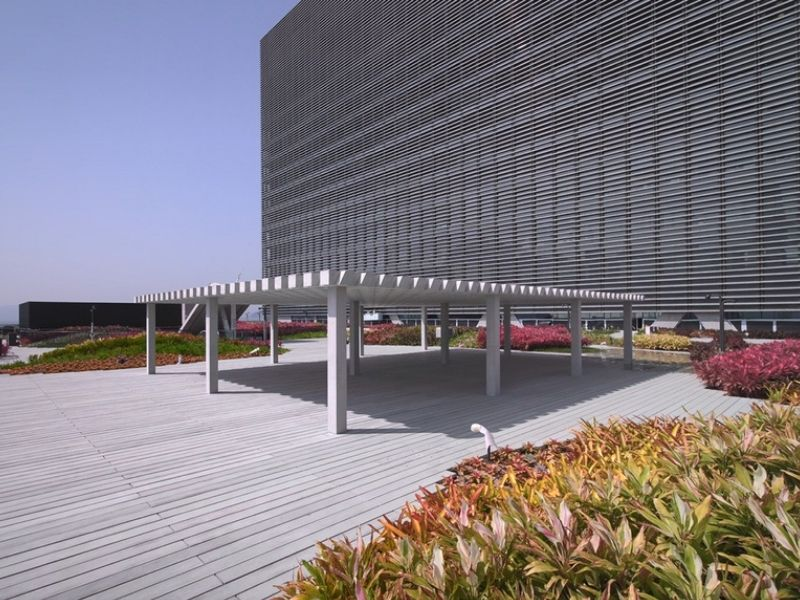 wide open outdoor area surrounded by plants