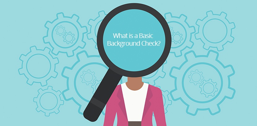 What is a Basic Background Check