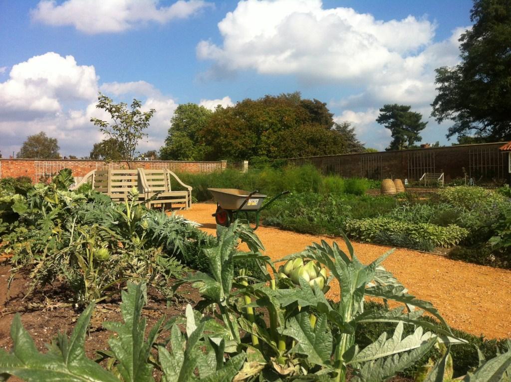 Королевский огород во дворце Хэмптон Корт: Kitchen garden