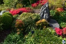 Кью-гарденс японский садик