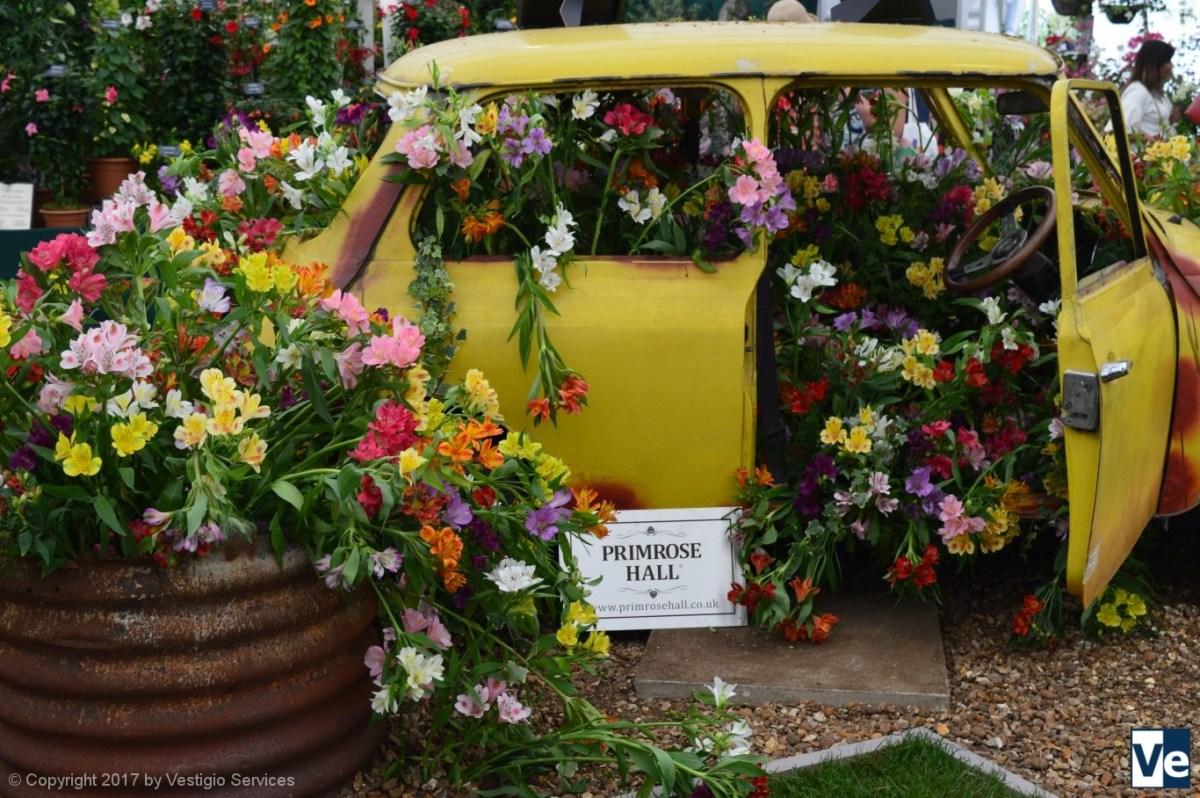 Флористические мотивы в Хэмптон-Корт (Hampton Court Flower Show)